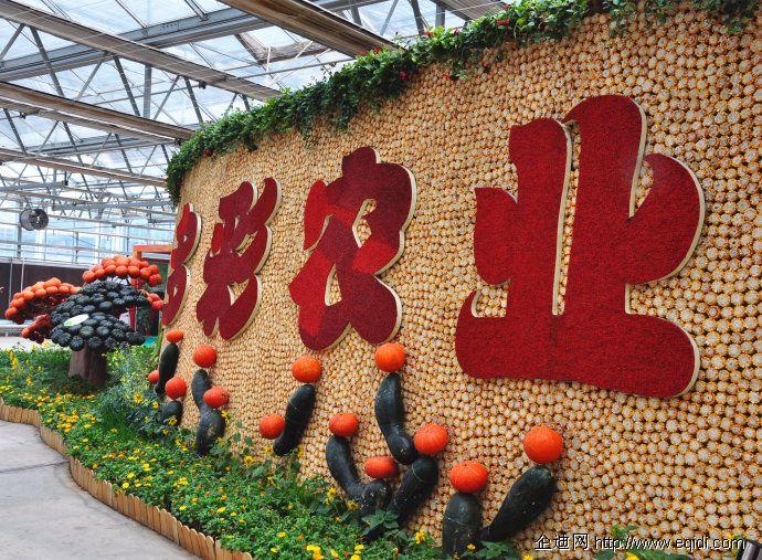 北京农业嘉年华项目 下周六开始